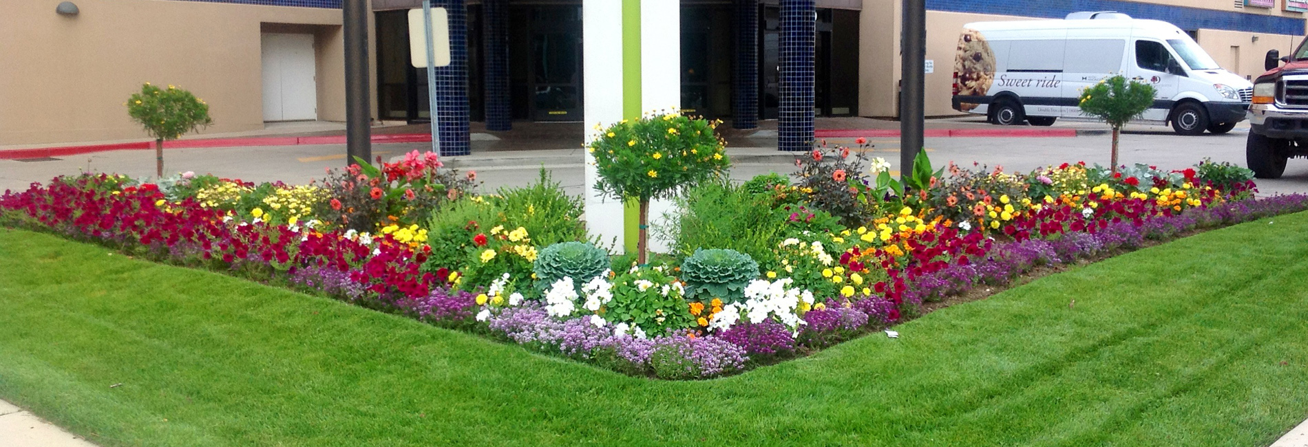 Commercial Residential Landscaping Services In New